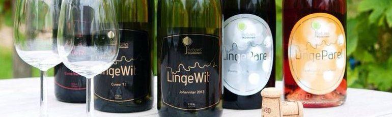 Betuws wijndomijn wijnen